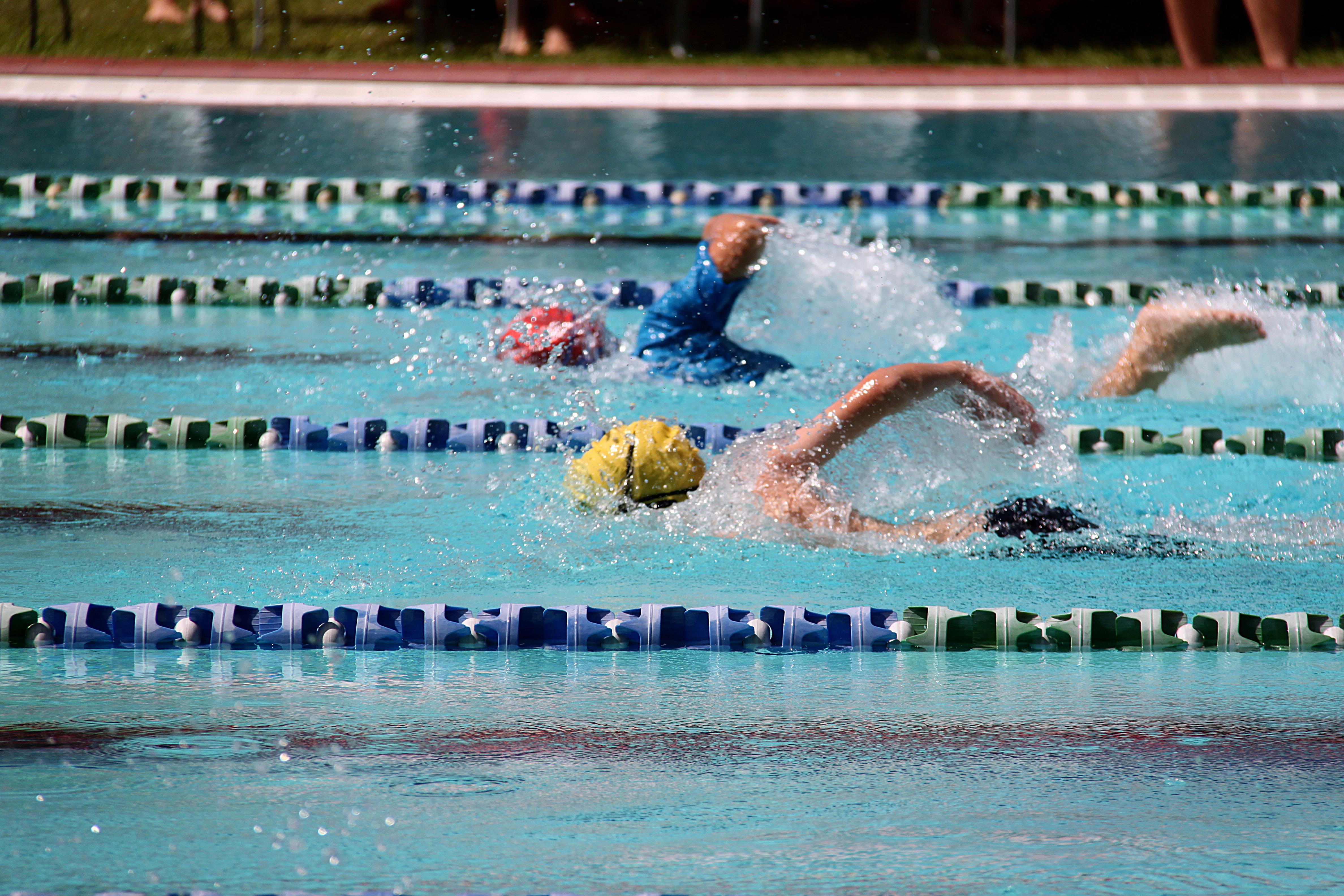 Wimbledon And Wandsworth Swimming Lessons Blue Wave Swim